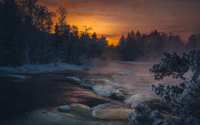 Wallpaper sunset, forest, river, branches, the evening, fog, frost, winter, snow, for