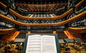 Wallpaper photo, Philharmonic, music stand, cello, sheet music, music, philharmonic, music, music stand, photo, cello, notes