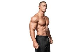 Picture pose, actor, torso, muscle, muscle, wrestler, press, WWE, John Cena, John Cena, bodybuilder, abs, bodybuilder, …