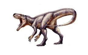 Picture dinosaur, predator, tail
