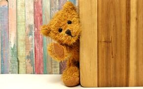 Picture toy, bear, The door