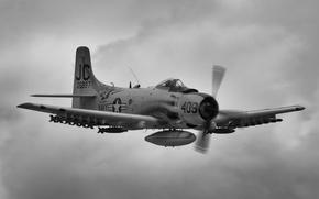 """Picture attack, """"Skyraider"""", Skyraider, A-1"""