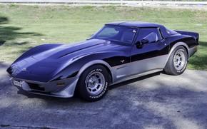 Picture Corvette, Chevrolet, 1978, Stingray