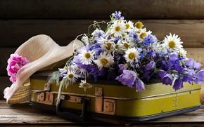 Picture flowers, bouquet, hat