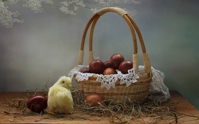 Wallpaper spring, basket, chicken, still life, eggs, Easter