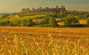 Picture field, landscape, wall, tower, Italy, Tuscany, Monteriggioni