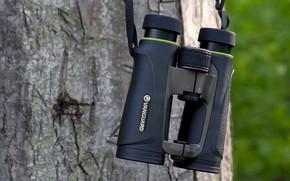 Picture plastic, increase, binoculars
