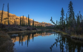Picture forest, lake, reflection, Canada, Jasper National Park, Glory Hole