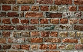 Wallpaper wall, background, brick