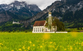 Picture greens, field, forest, trees, landscape, flowers, mountains, nature, castle, spring, yellow, Germany, Alps, meadow, Church, …
