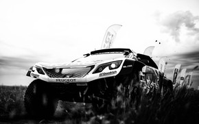 Picture Sport, Speed, Race, Dirt, Peugeot, Lights, Red Bull, Rally, Rally, Sport, Black and white, DKR, ...