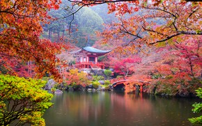 Wallpaper Park, bridge, ladder, colorful, trees, the bushes, Japan, Kyoto, leaves, pagoda, pond, branches, autumn, stones