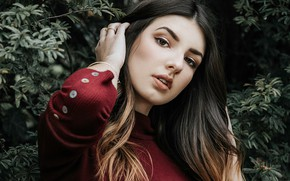 Picture look, leaves, girl, branches, pose, background, portrait, makeup, brunette, hairstyle, beautiful