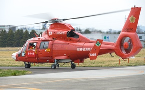 Picture Eurocopter, multi-purpose helicopter, AS365N3, Dauphin 2