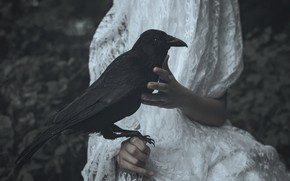 Picture dress, crow, Lucz Anne Fowler