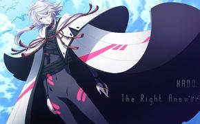 Picture anime, art, guy, cloak, Seikaisuru Kado