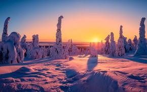 Wallpaper sunset, Finland, winter, the evening, Riisitunturi National Park