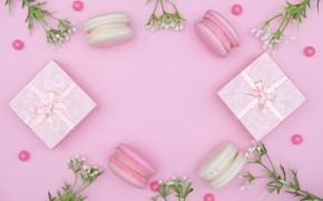 Wallpaper holiday, gift, macaroon, cake