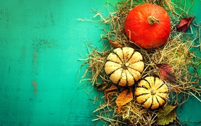 Picture hay, pumpkin, the gifts of autumn