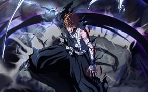 Picture Bleach, Ichigo, Shinigami