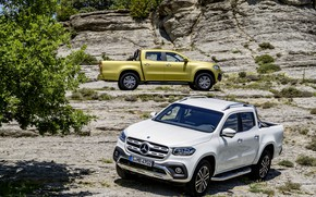 Picture white, stones, yellow, rocks, vegetation, Mercedes-Benz, 2017, X-Class, the highlands, pickups