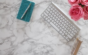 Picture roses, handle, Notepad, pink, flowers, roses, keyboard, marble