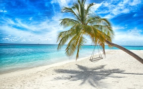 Picture swing, the sun, tropical, summer, sand, beach, sea, sand, sea, palms, beach, shore, island, paradise, ...