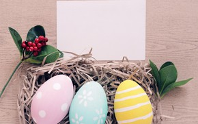 Picture berries, sprig, holiday, eggs, Easter, Socket