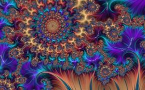 Picture pattern, color, fractal, bright