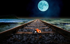 Picture sea, the moon, coast, rails, ladybug