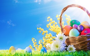 Wallpaper spring, basket, decoration, Easter, Easter, grass, the sun, flowers, the painted eggs, eggs, spring, Happy, ...