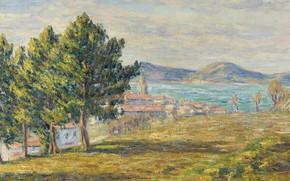 Picture landscape, picture, Francis Picabia, Francis Picabia, South Coast