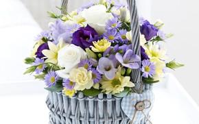 Picture basket, rose, chrysanthemum, eustoma, freesia