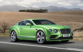 Picture car, Bentley, Bentley Continental GT4