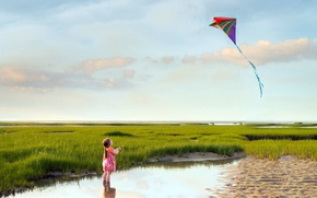 Picture sea, summer, the wind, shore, girl, Go fly a kite