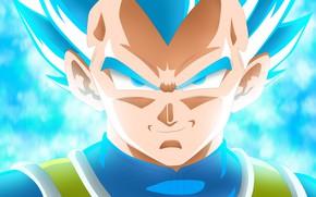 Picture Blue, Super Saiyan, Vegeta Dragon Ball