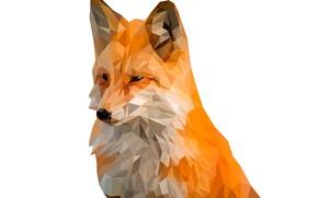 Wallpaper background, animal, triangles, Fox