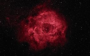 Wallpaper Rosette Nebula, stars, space, beauty