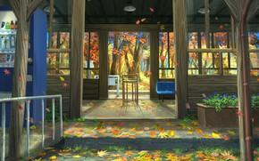 Wallpaper nature, autumn, porch, leaves