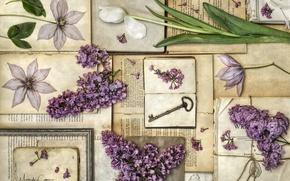 Picture books, Tulip, key, vintage, lilac, clematis, herbarium