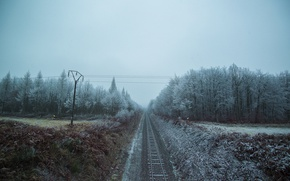 Picture forest, snow, railroad, power lines
