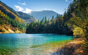 Picture forest, autumn, the sky, the sun, clouds, tourists, lake, China, Jiuzhaigou, people, bridges, trees, national …