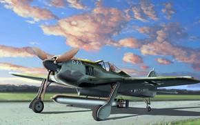 Picture Fw 190, fighter-monoplane, Focke-Wulf, Luftwaffe, Shrike, German single-seater single piston