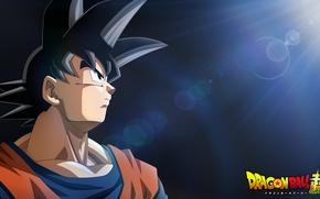 Picture game, anime, hero, asian, martial artist, manga, japanese, Son Goku, kimono, oriental, asiatic, Dragon Ball, …