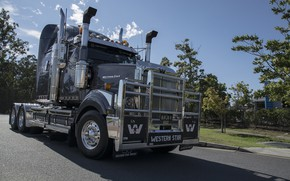 Picture Gray, Western Star, 4900