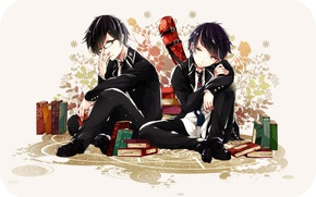Picture anime, art, two, brothers, boys, Ao no Exorcist