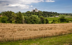 Picture Nature, Field, The city, Italy, Landscape, Wheat