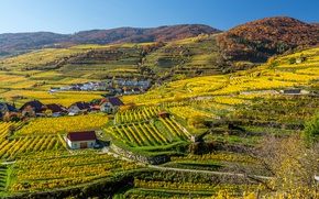 Picture the sun, hills, field, Austria, houses, the view from the top, plantation, White churches