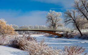 Picture winter, snow, trees, bridge, Canada, Albert