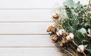 Picture greens, spruce, bouquet, cotton
